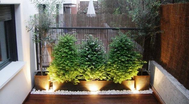 Un buen juego de plantas y la iluminación perfecta da resultados espectaculares a la hora de plantearte cómo decorar una terraza para que luzca como nueva